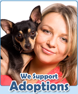 PetMeds® supports animal shelter adoptions