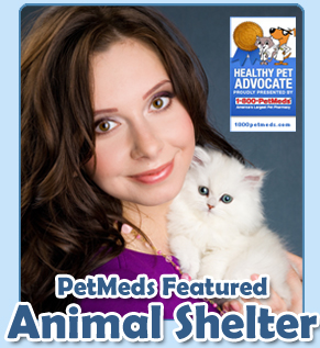 PetMeds® featured animal shelter