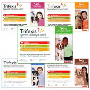 Get Trifexis at 1-800-PetMeds.com