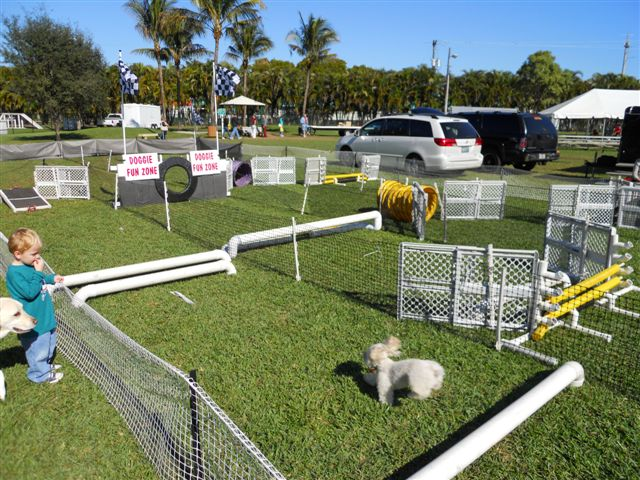 PetMeds was proud to help support Doggie Palooza