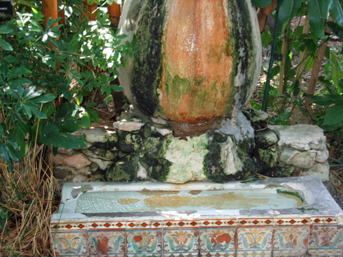 The famous cat drinking fountain at the Hemingway house.