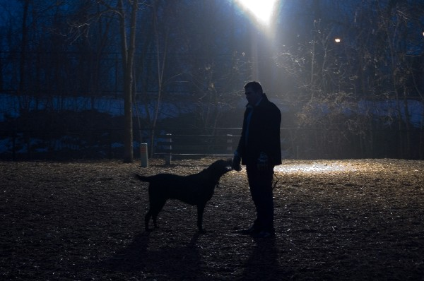 There are a number of steps you can take to make nighttime walks with your dog safe.