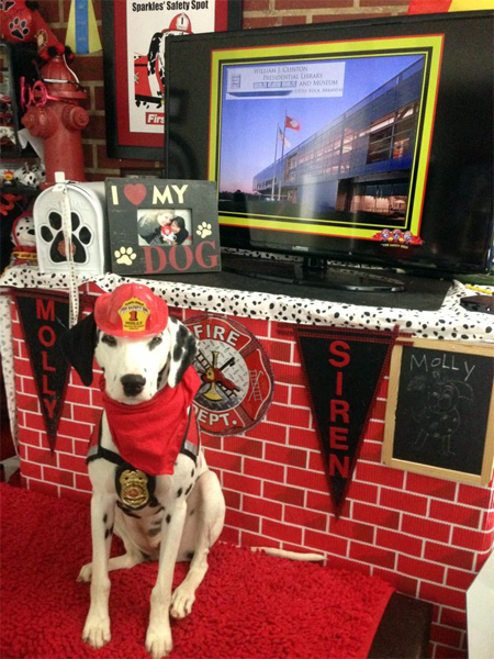 The Fire Safety Dogs