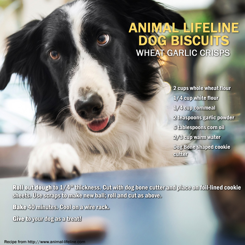 Animal Lifeline of Iowa's dog biscuits recipe