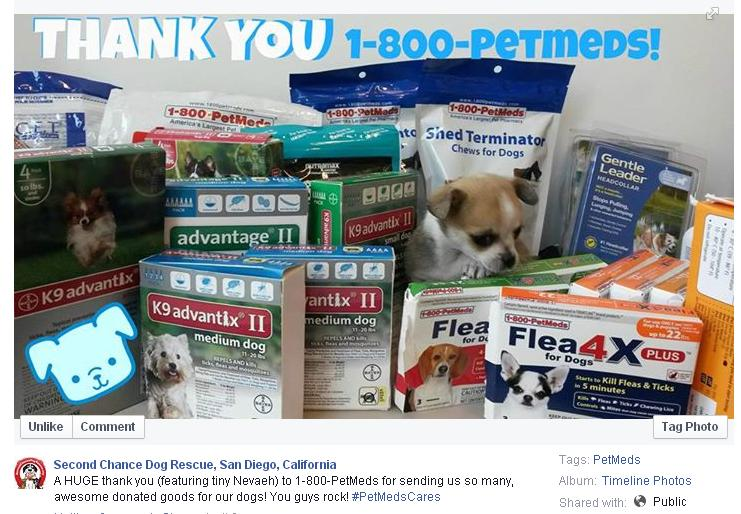 PetMeds Cares donation to Second Chance Dog Rescue