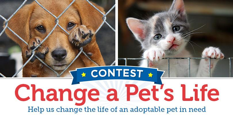 The 2016 1-800-PetMeds Change a Pet's Life Contest