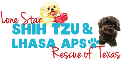 Lone Star Shih Tzu and Lhasa Apso Rescue of Texas