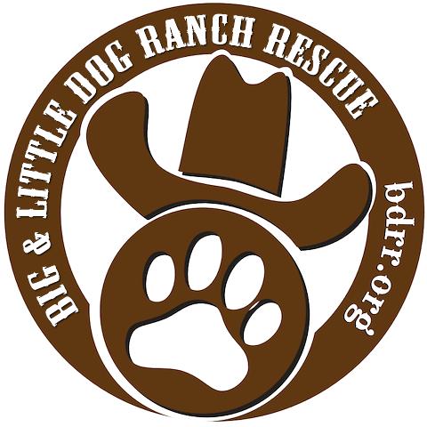 Big Dog Ranch Rescue Adoption
