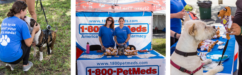 1-800-PetMeds at Barktoberfest