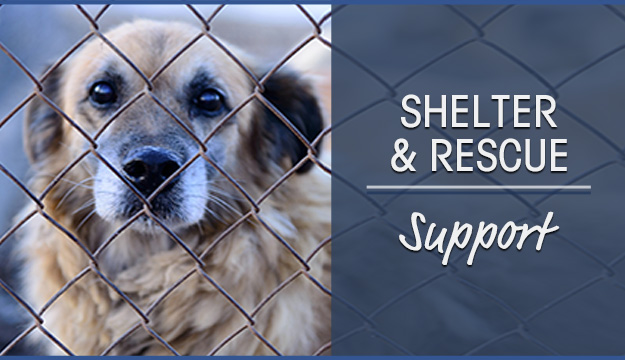 Shelter & Rescue Support
