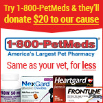 PetMeds Shelter Affiliate example banner