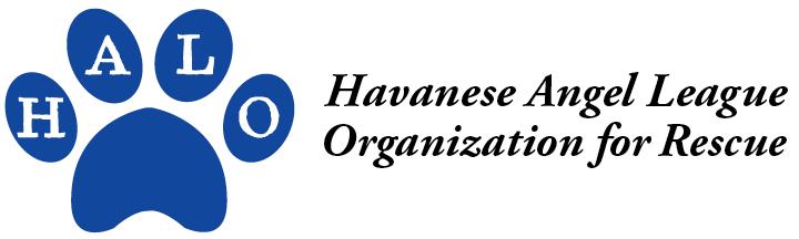 Havanese Angel League Organization for Rescue logo